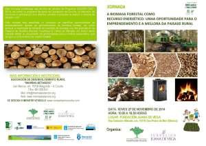 diptico_xornada_biomasa_forestal_27112014_Página_2