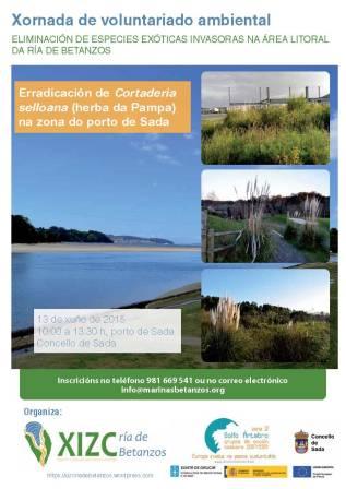 Cartel Voluntariado Ambiental